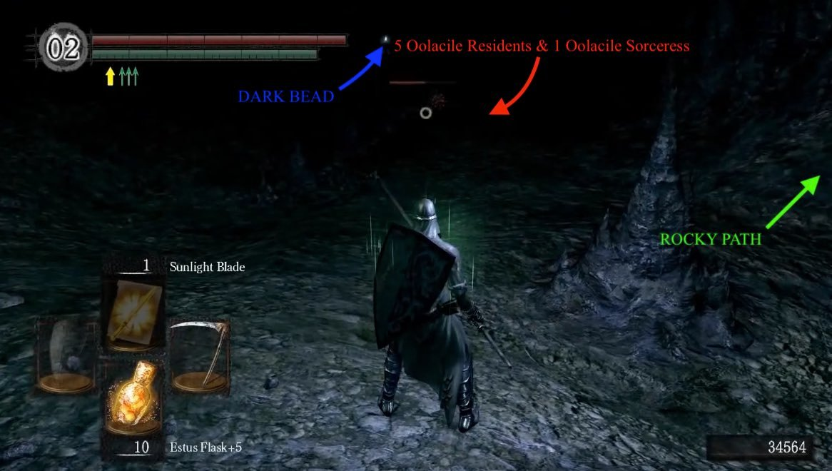 chasm of the abyss dark souls wiki