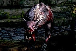 undead_attack_dog_enemy_dark_soul.jpg